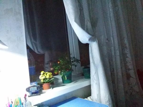 Вечернее окно