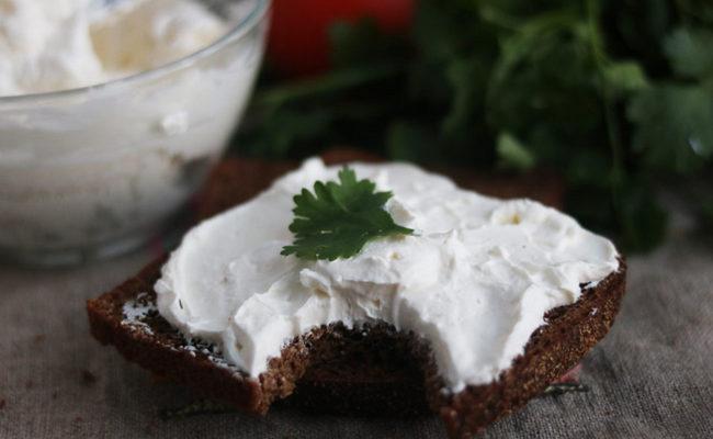 Philadelphia Cheese - Home Recept med dina händer på mjölk och kefir