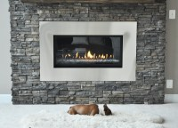 Modern Fireplace Renovation