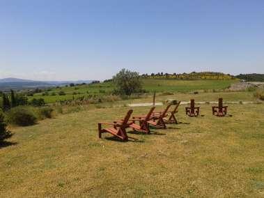 Photos - Vue sur les vignes du Viala