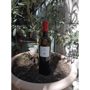 Huile d'olive Bio Domaine de Lagoy (à l'unité)