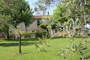 Le gîte du Mas Caron caché par une branche d'olivier