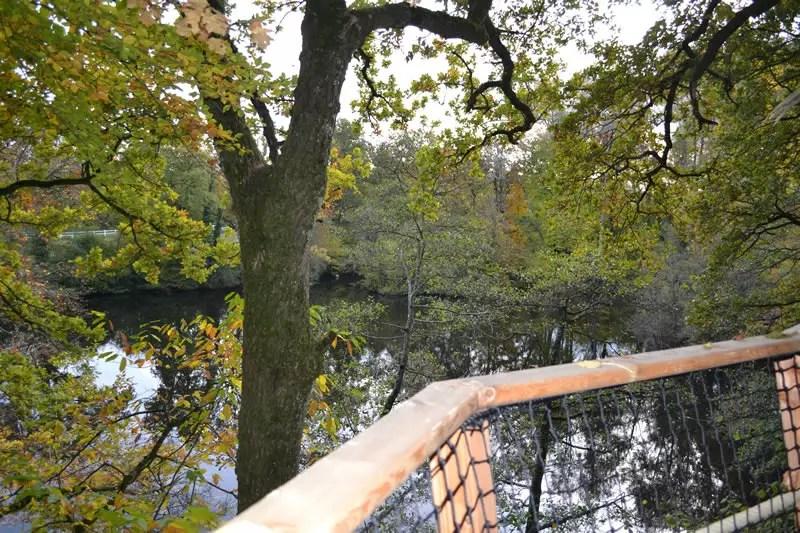 cabane-dans-les-arbres-famille-lisbonne-lac