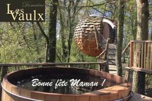 Séjour dans les arbres pour la fête des mères au Domaine des Vaulx
