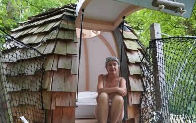 Chambre d'hôtes en Mayenne. Des cabanes dans les arbres à La Baconnière