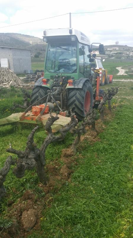 Vin Biodynamie Ardèche