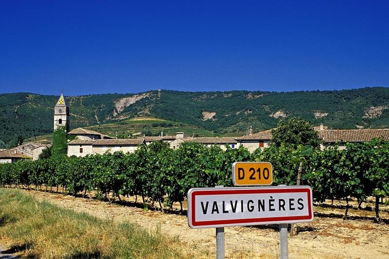 Viticulteur Biodynamie Ardèche