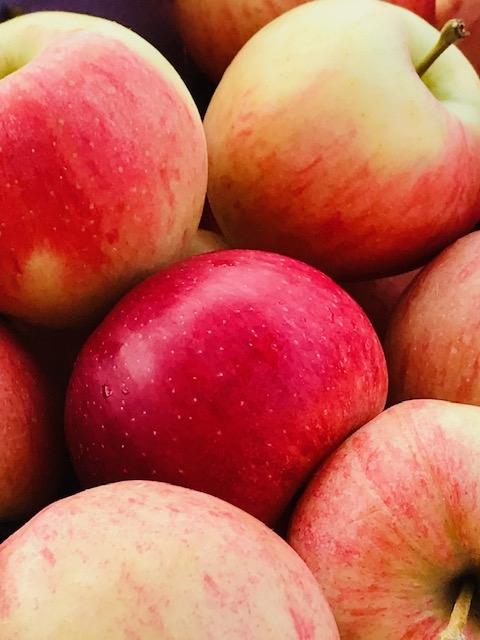 Pommes royal gala magnifiques