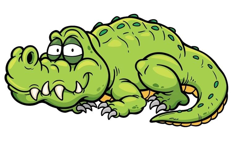 Crocodile DFC