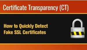 How It helps Detect Fake SSL Certificates