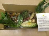 高橋農園野菜セット
