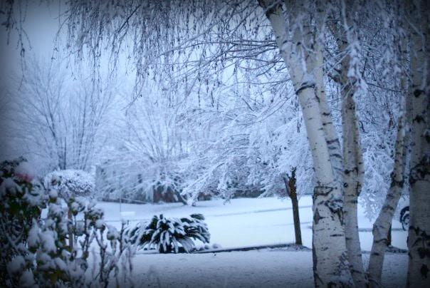 Snow in yucaipa California