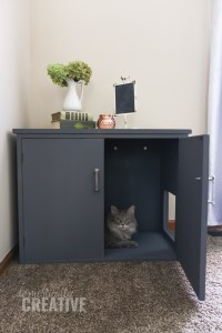 Diy Kitty Litter Box Furniture - DIY Design Ideas