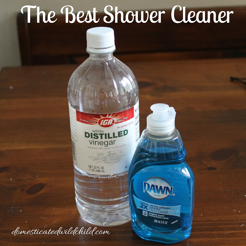 The Best Shower CleanerDomesticated Wild Child