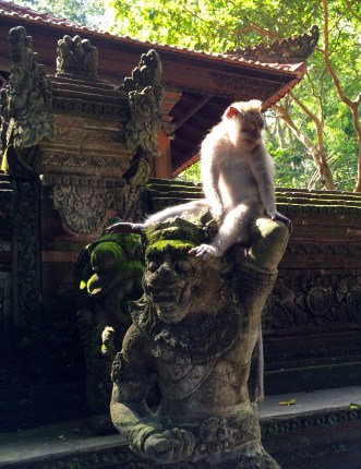 Monkeys and statues