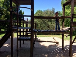 A playground at a winery. Sheer brilliance