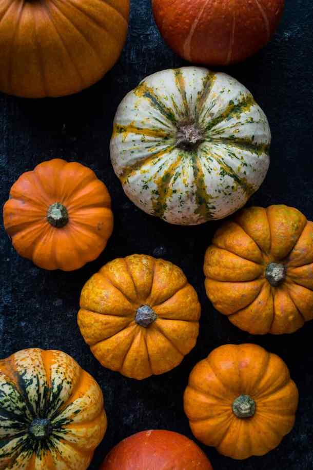 A selection of mini pumpkins and squash on a dark background.