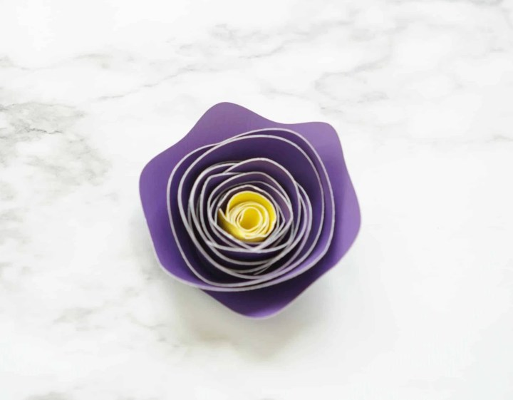 Two Toned Rolled Paper Flowers