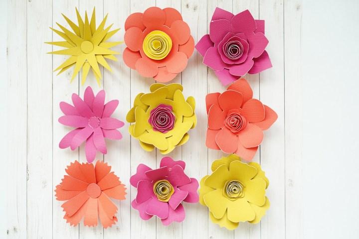Semi rolled 3D flowers