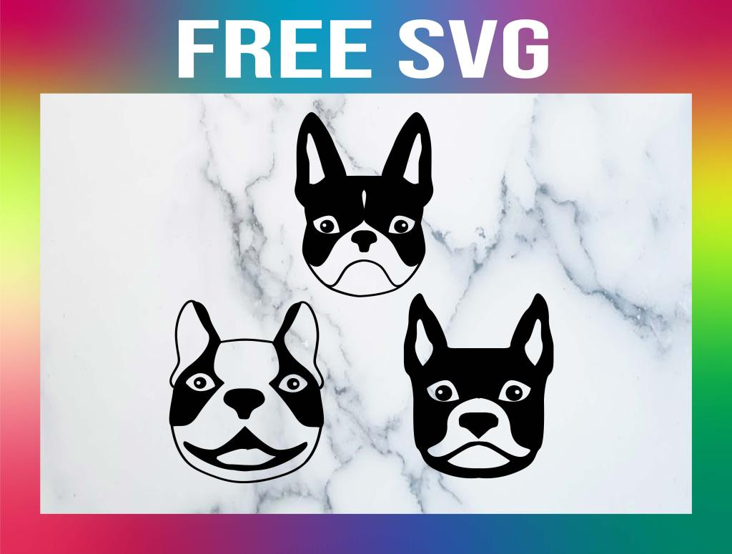 Free Boston Terrier SVG