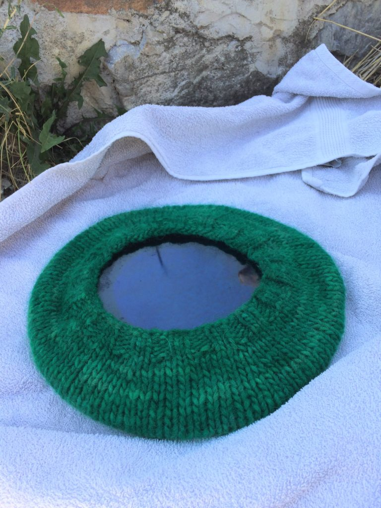 Blocking lopi beret with plate.