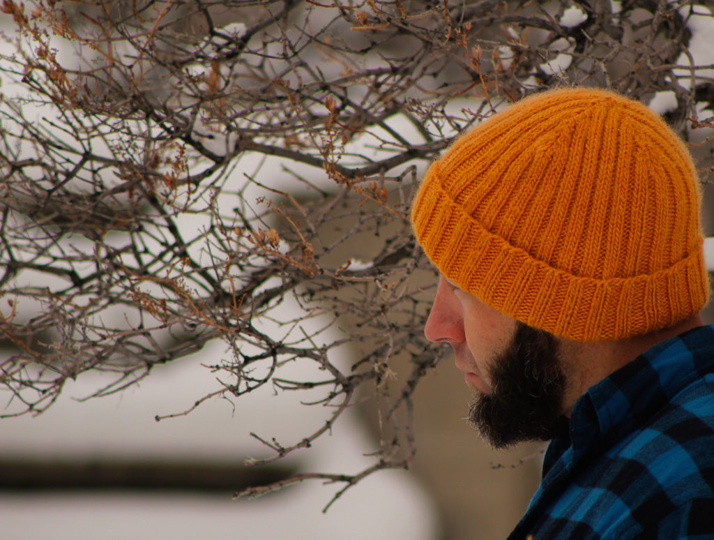 DOMESTIC STRATA // Two By Two Free Knitting Pattern Hat for Men