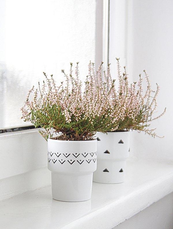 donice-miuus-zielony-design