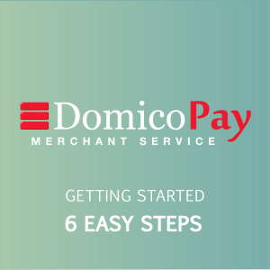 introducing domico pay