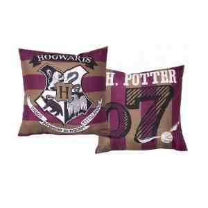 Coussin Harry Potter, 35X35