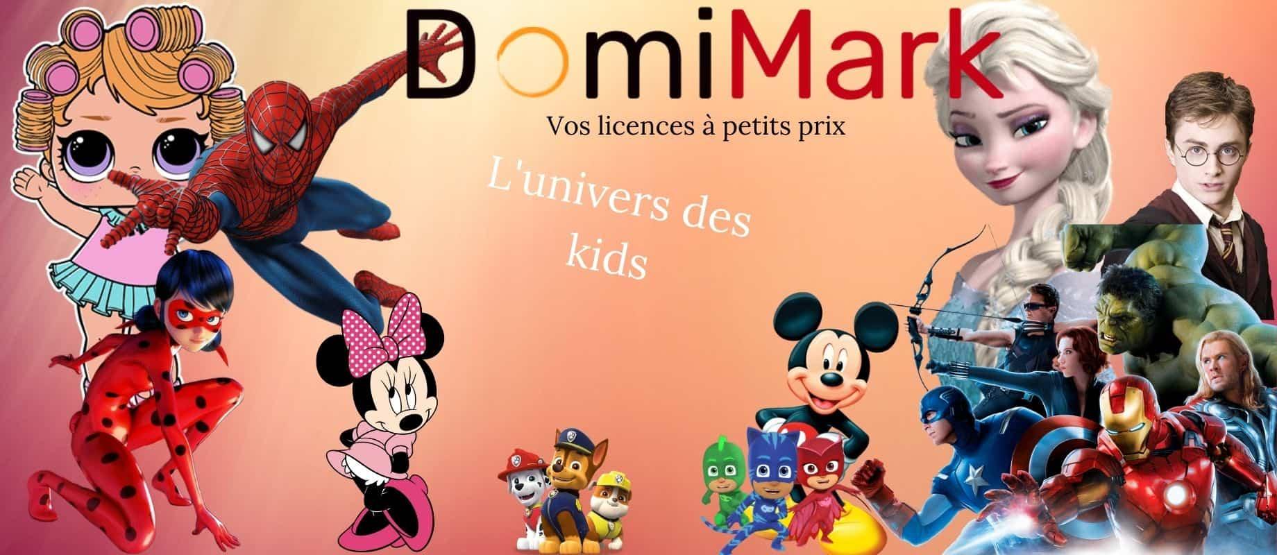Bannière d'accueil Domimark