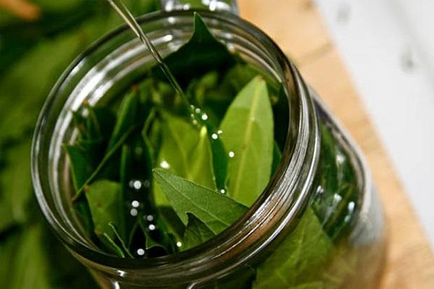 Biljka koja pročišćava organizam za tri dana: Ispire toksine i soli iz tijela
