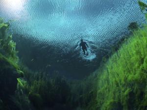 ecosistemas-manantiales_0