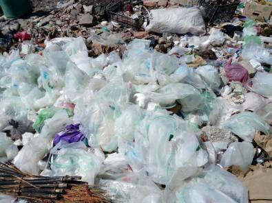 Tiradero clandestino de desechos biológicos