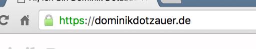 URL bzw. Domain im Browser