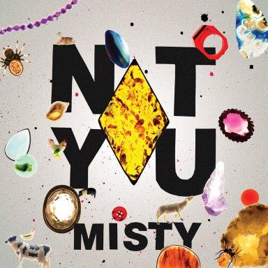 Not You, Misty