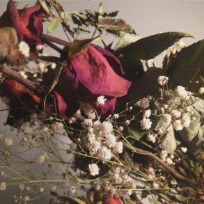 Logan Hill Funeral Pieces