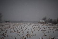 Pendant une tempête de neige, sur la route 132