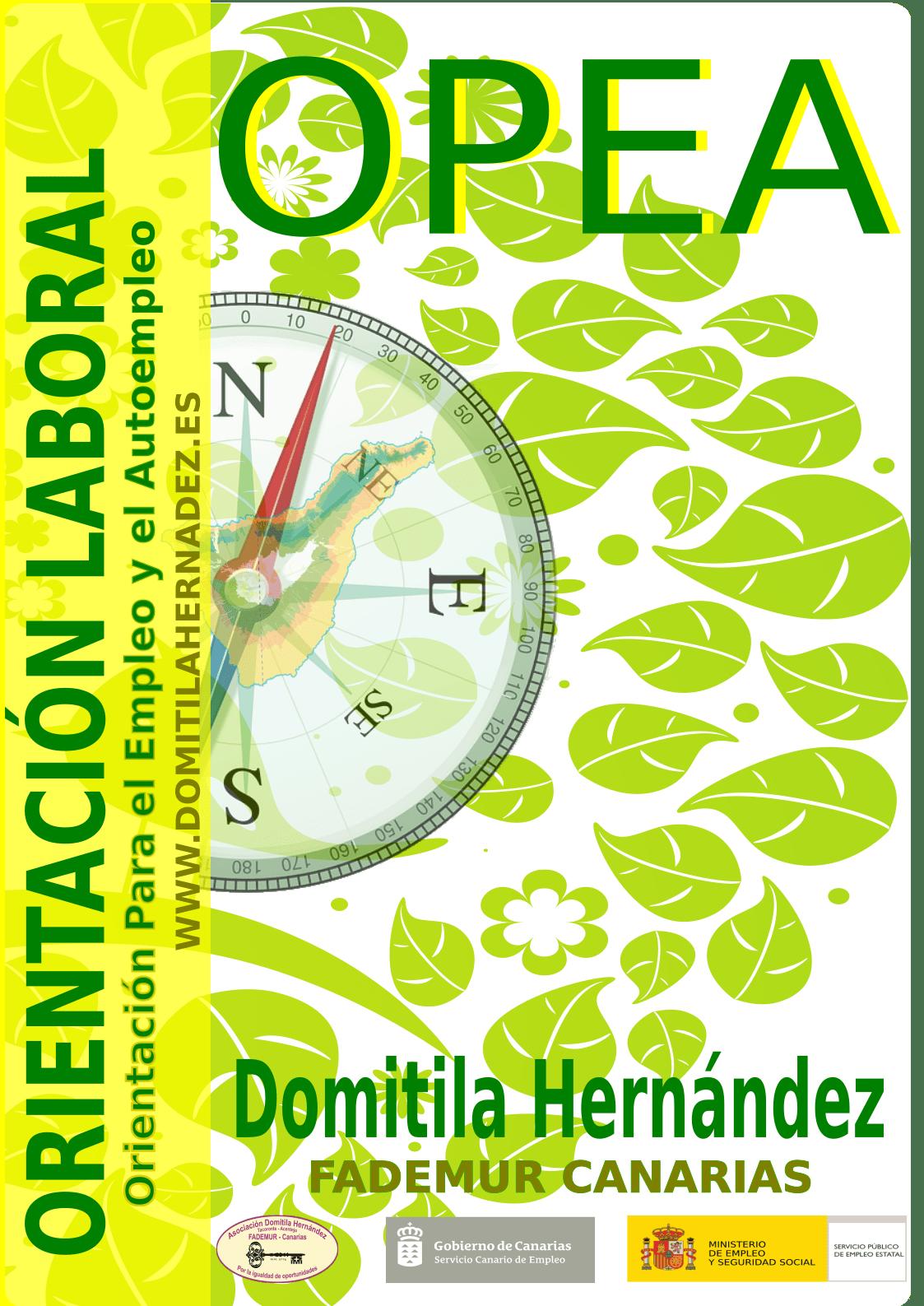opea2_pdf