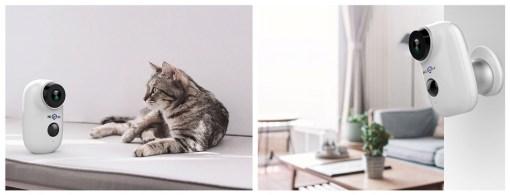 Une Hiseeu C10 surveillant un chat