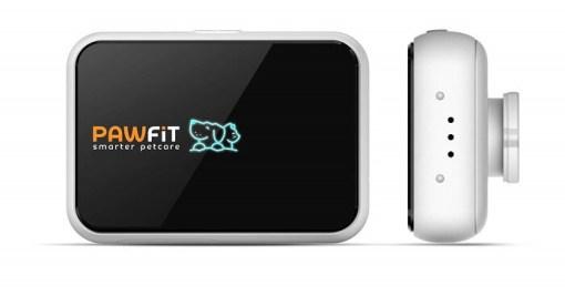 Le collier GPS Pawfit-S