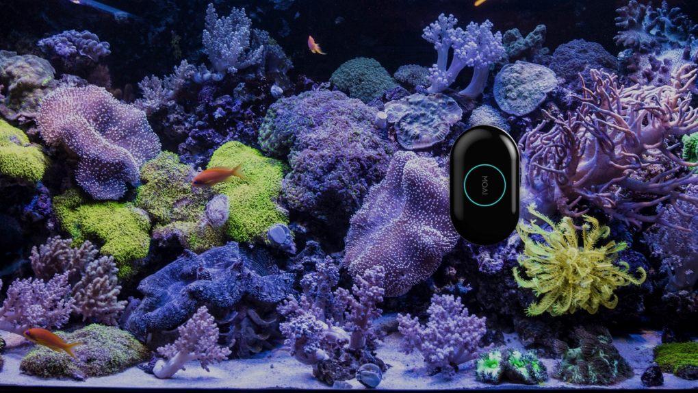 Moai le robot pour votre aquarium