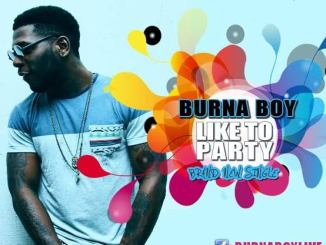 Burna Boy–Like To Party MP3 Download