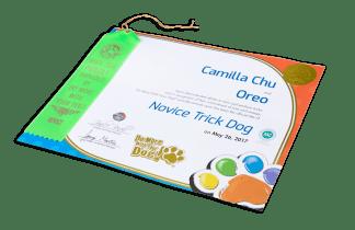Trick Dog Titles