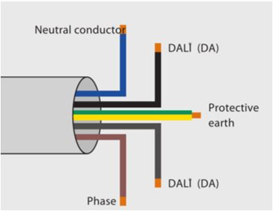 Dali wiring