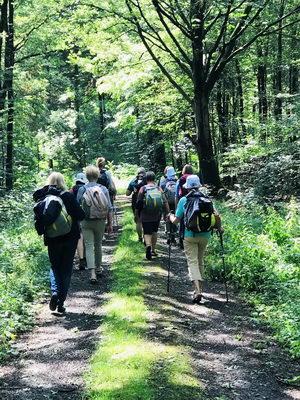 Der Sigwardsweg führt die Pilgerinnen und Pilger, wie hier beim Sommerpilgern des Sigwardsweg-Vereins, durch Wälder zu insgesamt 24 bedeutenden Pilgerstationen. Foto: privat