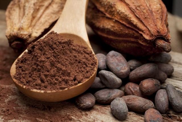 DOMUS 24® Apoio Domiciliário - Alimentos Antioxidantes - Cacau