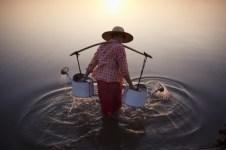 Bagan, au Myanmar - Une femme puise de l'eau dans une rivière près du village de Bagan.