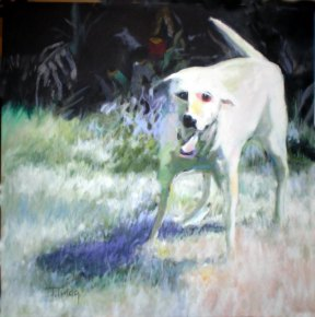 Ghost Dog, Ghost Dog, oil on canvas, 30x30 by Julie Trigg