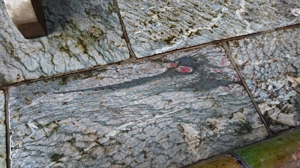 三峯神社の石畳に浮き出た龍