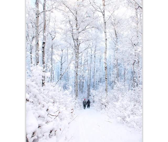 Two People Walk Hand In Hand In A Winter Wonderland With Tall Snow Covered